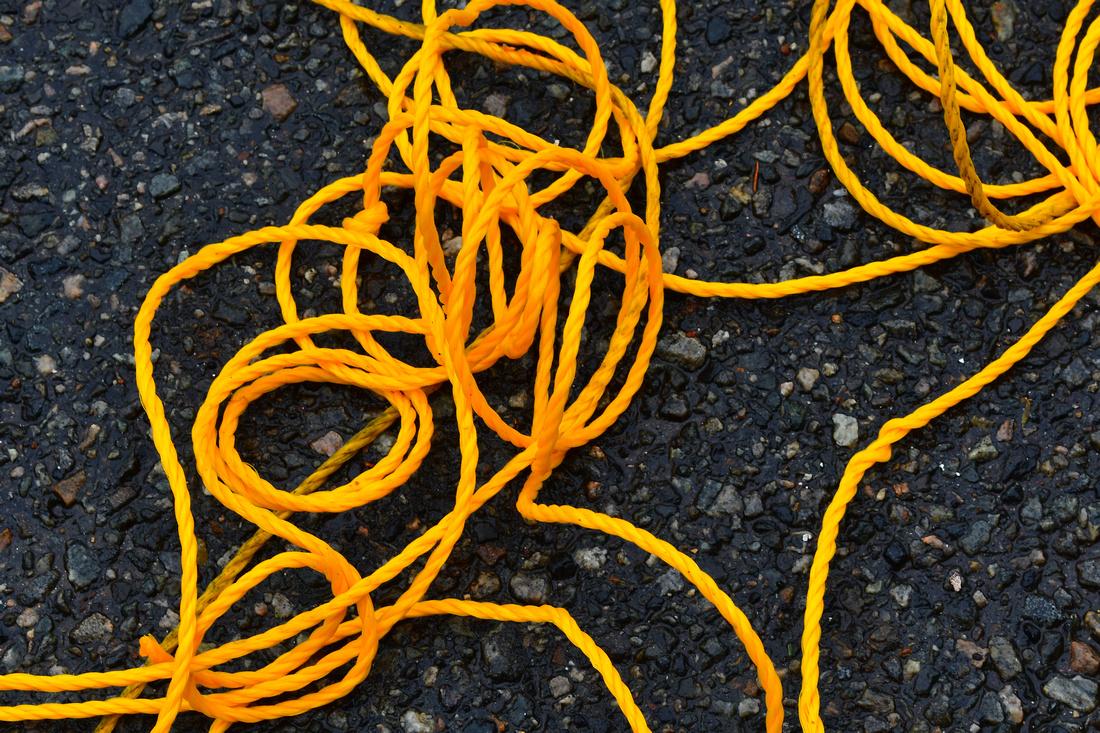 Yellow Tangle 2