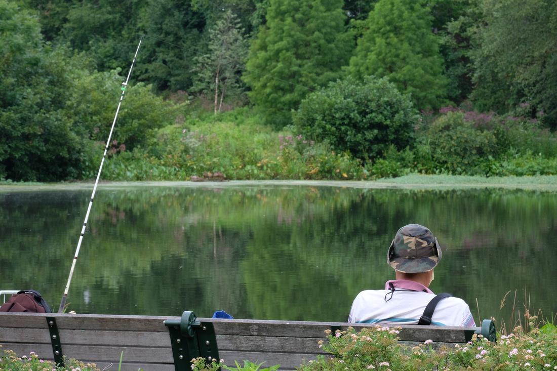 Park Bench Fishing